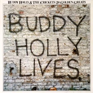Buddy Holly & The Crickets - 20 Golden Greats (LP) (EX/VG+)